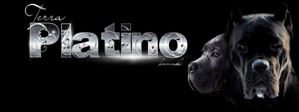 Terra Platino Kennel
